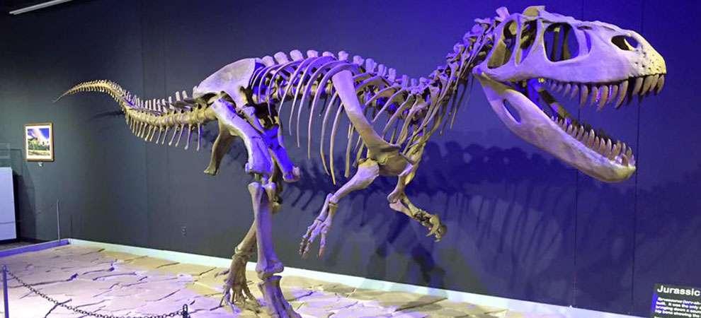 Mesalands Dinosaur Museum, Tucumcari